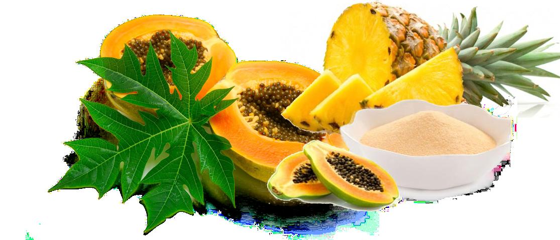 enzime digestive din plante