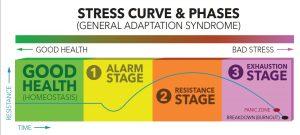 dereglarea suprarenala - etape - oboseala croninca - life balance - emese magdas
